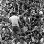 Woodstock 69433-10