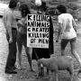 Woodstock 69433-24a