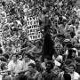 Woodstock 69433-7a