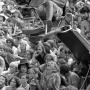 Woodstock 69443-33